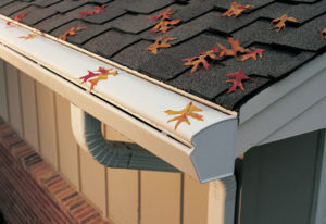 Fall leaves on roof and gutter