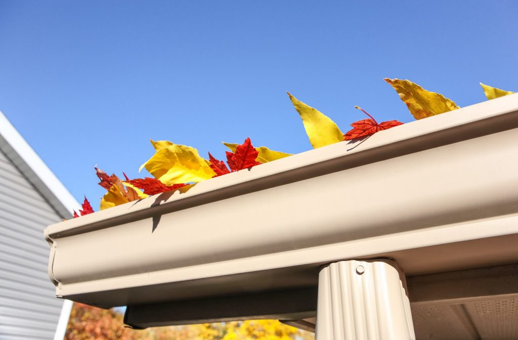 leaves sticking out of gutters