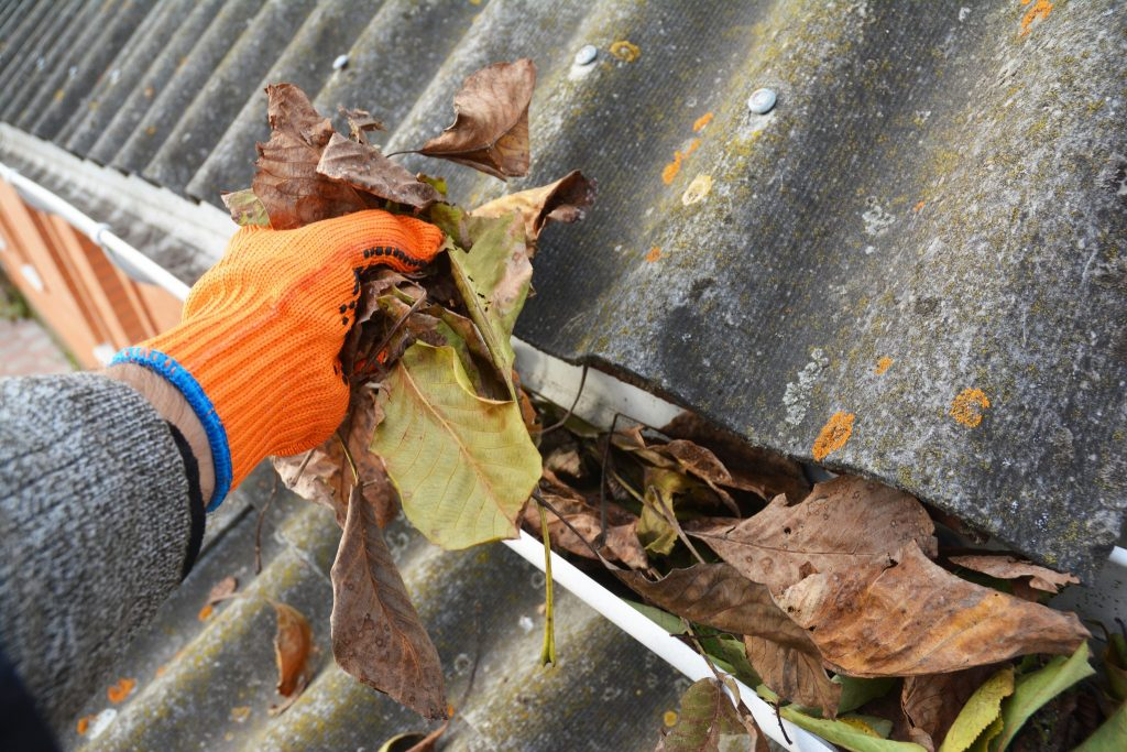 Person with gloves clearing leaves out of gutter