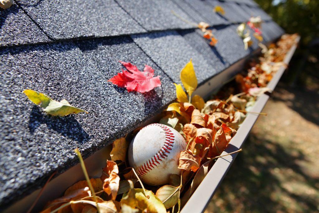 Leaves and baseball clogging up gutter